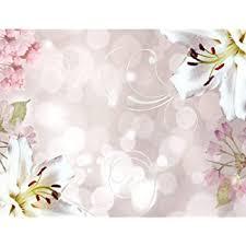 tapeten fototapete blumen orchidee weiß vlies wand tapete