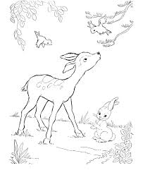 Full Size Of Coloring Pageextraordinary Pages Deer Page Appealing Printable