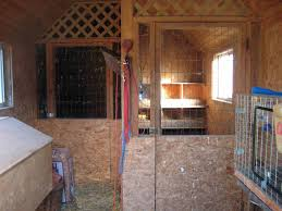 Bunny | Sheepy Hollow Farm Learn How To Build A Rabbit Hutch With Easy Follow Itructions Plans For Building Cages Hutches Other Housing Down On 152 Best Rabbits Images Pinterest Meat Rabbits Rabbit And 106 Barn 341 Bunnies Pet House Our Outdoor Housing Story Habitats Tails Hutch Hutches At Cage Source Best 25 Shed Ideas Bunny Sheds Shed Amazoncom Petsfit 425 X 30 46 Inches Cages Exterior Cstruction Nearly Complete Resultado De Imagem Para Plans Row Barn Planos Celeiro