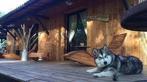 chambre d hote hourtin au bois flotté chambre d hôtes cartignac 222 33990 hourtin