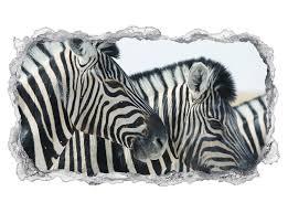 3d wandtattoo zebra zebras kopf afrika tier tapete wand aufkleber wanddurchbruch sticker selbstklebend wandbild wandsticker wohnzimmer 11p1345