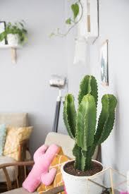 diy wohnzimmer umstyling interior diy kaktus 39