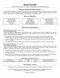 Sample Resume For Automobile Sales Executive Amazing Graduate Puter Product Baskanai