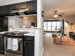 20 best apartments for rent in duluth ga with pictures