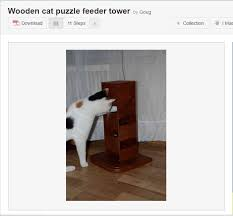 Homemade Puzzles Food Puzzles for Cats