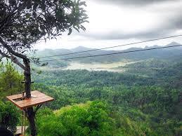Kalibiru Jogja Awesome I Am The Mob National Park