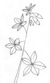 Simple Drawings Find This Pin And More On How To Draw Flowers Trees Etc