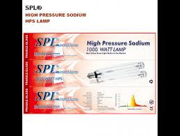 1000 Watt Hps Lamp by Spl Horticulture Double Ended 6pack 1000 Watt High Pressure