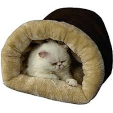 Armarkat Cat Bed by Armarkat Pet Supply Store Shop The Best Deals For Dec 2017