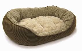 Llbean Dog Bed by Dog Beds For Large Dogs Costco 15 Dog Beds U2013 Gallery Images And