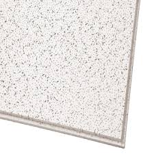 shop 2 x 4 ceiling tiles at lowes com