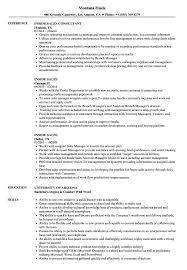 Inside Sales Resume Samples