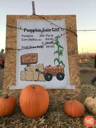 Pumpkin Patch Utah by Gibson U0027s Green Acres Dairy Corn Maze U0026 Pumpkin Patch The Salt