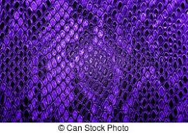 Shed Snake Skin Pictures by Stock Photo Of Shed Snake Skin Pattern Background Over Light