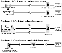 Infectivity in chimpanzees Pan troglodytes of plasma collected