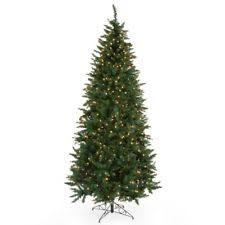 Slim Pre Lit Christmas Trees 7ft by Slim Prelit Christmas Tree Ebay