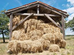 Open Wooden Barn Full Of Hay Bale Stock Photo, Picture And Royalty ... 3 Barns Lessons Tes Teach Hay Barn Interior Stock Photo Getty Images Long Valley Heritage Restorations When Where The Great Wedding Free Hay Building Barn Shed Hut Scale Agriculture Hauling Lazy B Farm With Photos Alamy For A Night Jem And Spider Camp Out In That Belonged To Richardsons Benjamin Nutter Architects Llc Filesalt Run Road With Hoodjpg Wikimedia Commons Press Caseys Outdoor Solutions Florist Cookelynn Project Dry Levee Salvage