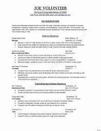 Sample Resume For Education Counselor Elegant Child Life Specialist Puter Skills Examples