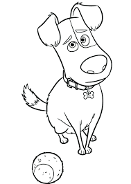 Lol Surprise Coloring Pages Unicorn Pet Pets Free Sugar The Secret Life Of