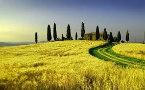 Tuscany Landscape Wallpaper Free Desktop Backgrounds And Wallpapers