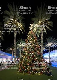 Miami Beach Christmas Tree Decorations Palm Trees Lincoln Road Mall Royalty Free Stock Photo