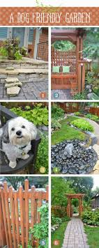 Landscaping Do's And Don'ts When You Have A Dog | Yards, Dog And ... Dog Friendly Backyard Makeover Video Hgtv Diy House For Beginner Ideas Landscaping Ideas Backyard With Dogs Small Patio For Dogs Img Amys Office Nice Backyards Designs And Decor Youtube With Home Outdoor Decoration Drop Dead Gorgeous Diy Fence Design And Cooper Small Yards Bathroom Design 2017 Upgrading The Side Yard