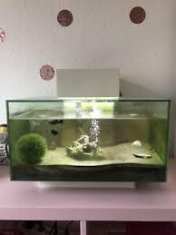 aquarium modern ebay kleinanzeigen