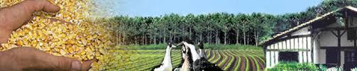 chambre agriculture des landes accéder aux aides à l apprentissage chambre d agriculture des landes