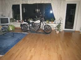re mopeds truden gummikühe schnäuzer und lange matten