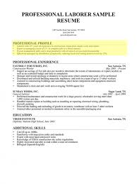 How To Write A Professional Profile Resume Genius Inside Examples