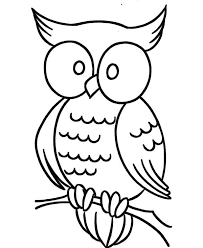 Owl Large Eye Coloring Page PageFull Size