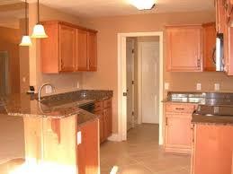 kitchen colors that match brown cabinets desjar interior