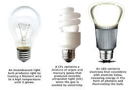 best fluorescent light color for office adammayfield co