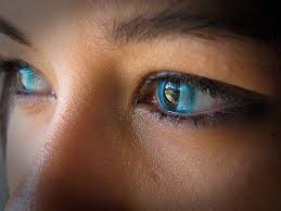 cat contacts best 25 cat eye contacts ideas on cat eye colors