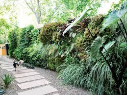 100 Bali Garden Ideas Amazing Backyard Sunset Sunset Magazine