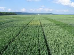 chambre agriculture oise 1001 micro parcelles pour l agriculture d aujourd hui et de demain