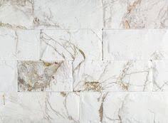 atlantic shell stone coquina stone coral stone tiles by