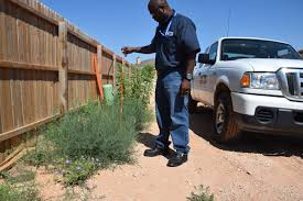 City Works To Gain Compliance On Maintenance Of Tall Grass And Weeds ...