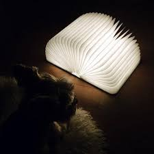 A beautiful lamp that looks just like a hardcover book