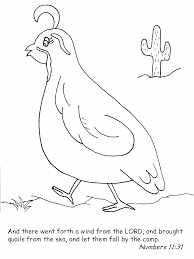 Quail Bible Coloring Pages