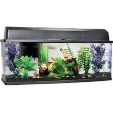 Amazon Petco Bookshelf Freshwater Fish Aquarium Pet Supplies