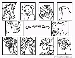 Zoo 40 Animales Páginas Para Colorear
