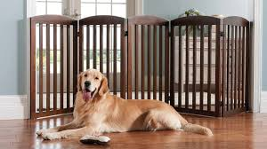 Ez Bed Frontgate by Freestanding Wooden Pet Gate Pet Gate Dog And Boy Dog