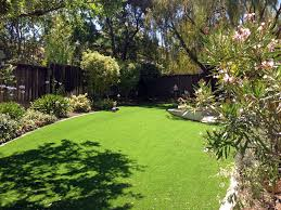 Carpet Grass Florida by Artificial Lawn Hialeah Florida Home And Garden Backyard Makeover