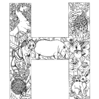 Animal And Plant Alphabet Letter H