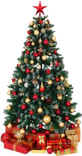 Twinkling Christmas Tree Lights Canada by Christmas Lights