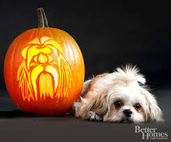 Wolf Pumpkin Carving Patterns Easy by Free Pumpkin Stencils For Halloween