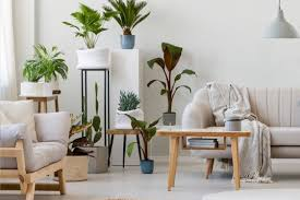 wohnzimmer idee gestaltungsbeispiel mit dekopflanzen