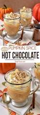 Baileys Pumpkin Spice Punch by Pumpkin Spice White Chocolate To Drink For Pinterest
