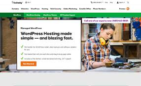 10+ Best WordPress Hosting Services 2018   WPAll Top 4 Best And Cheap Wordpress Hosting Providers 72018 Best Hosting 2018 Discount Codes To Get The Deals Heres The Absolute Best Option For Your Blog Wp Service Wordpress By Vhsclouds 10 Plugins Websites Blogs Infographics 5 Themes Web Companies Services Wpall Managed How To Choose The Provider Thekristensam List Of For Bloggers 7 Compared